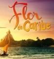Link toMúsicas da Trilha Sonora novela Flor do Caribe