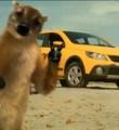 Link toJingle comercial Gol Rallye