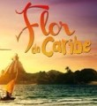 Link toNovela Flor do Caribe: Lady Antebellum - If I Knew Then