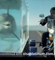 Link toMúsica do comercial do Visa Platinum com o golfinho
