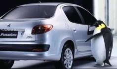Peugeot Zero Grau - Pinguins